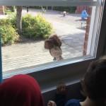 Bild på ett gosedjur som kikar in på förskolan